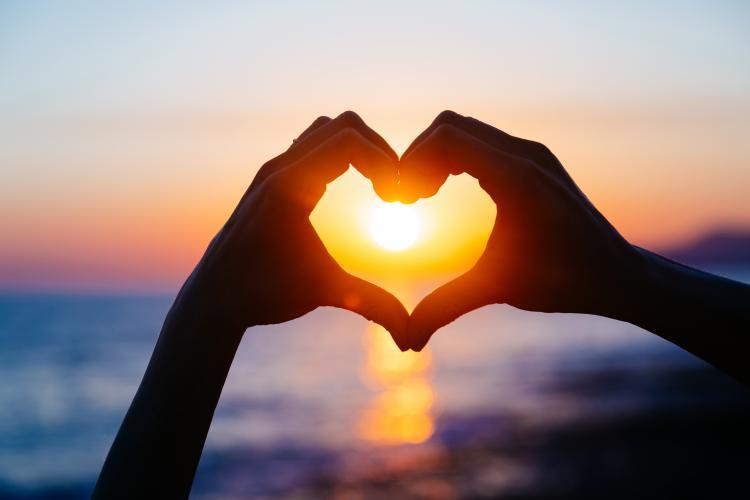 valentine, heart, love